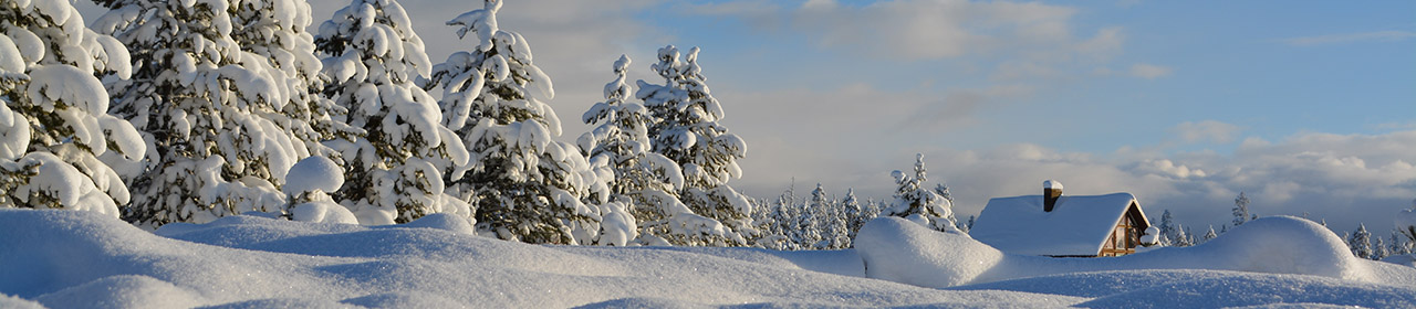 Winter & Snow Sports